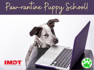 Paw-rantine Puppy School